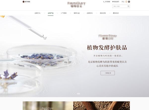 化妆品公司网站建设项目