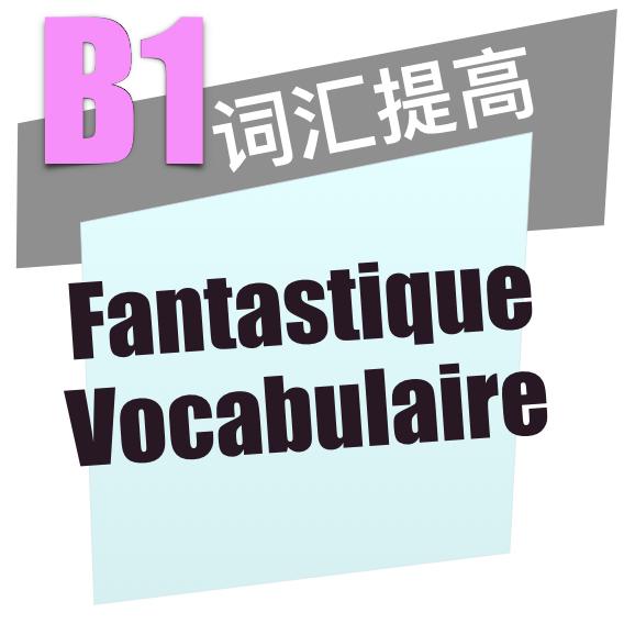 法语B1词汇提高