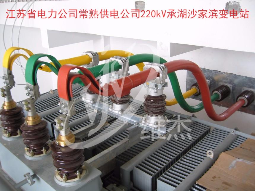 江苏省电力公司常熟供电公司220kV承湖沙家滨变电站