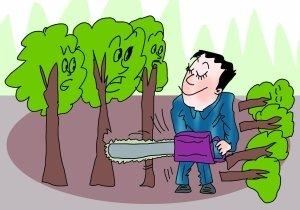 盗伐林木罪的共同犯罪认定标准