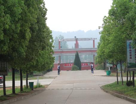 美丽校园3