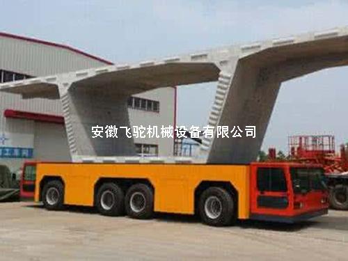 节段梁运输案例展示车