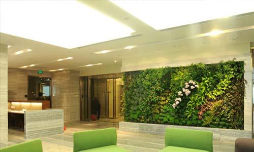 海口植物墙,海口垂直绿化,海口立体绿化